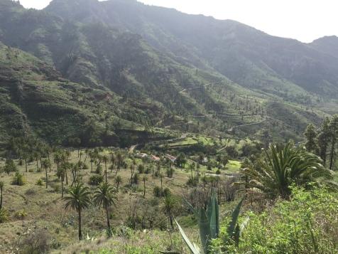 Vallée Benchijigua - La Gomera